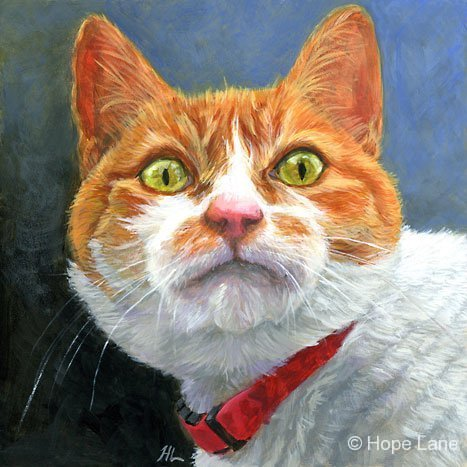 Green-eyed Cat, custom pet portrait of Kipper by Hope lane