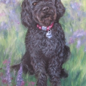 Sequoia, custom pet portrait of a Labradoodle by Hope Lane