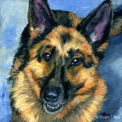 Rio the German Shepherd custom pet portrait by Hope Lane