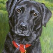 Bella the black Lab custom pet portrait painting by Hope Lane