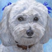 Chuckie, custom pet portrait of Bichon Frise by Hope Lane