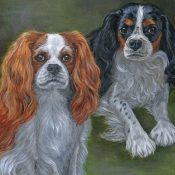 Harry and Georgie, custom pet portraits of Two King Charles Cavalier Spaniels by Hope Lane