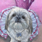 Molly, , custom pet portrait of a Shih Tzu Princess by Hope Lane