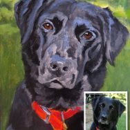 Painting A Black Dog From A Dark Photo