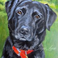 Painting Bella, A Black Dog, Part Two