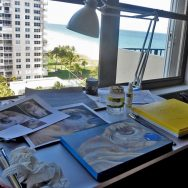 Working on Shanti the Pekingese