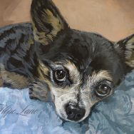 Chihuahua Painting Moving Along