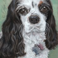 Finished Portrait of Morgan, a Cavalier King Charles Spaniel