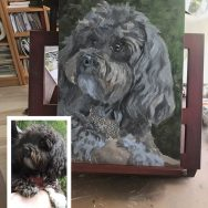 Starting to Paint Molly the Havanese