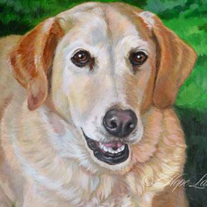 18 x 24 Pet Portrait