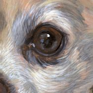 Detail from a Chihuahua painting