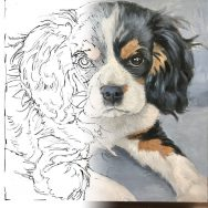 Starting a Painting of Jasper