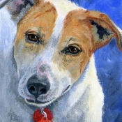 Wheezy, custom pet portrait of a mixed breed by Hope Lane