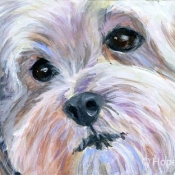 Little White Dog ACEO painting by Hope Lane