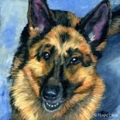 Rio the German Shepherd custom pet portrait by Hope Lane