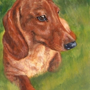 Dachshund Love dog painting by Hope Lane