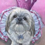 Molly, , custom pet portrait of a Shih Tzu Princess by Hope Lane