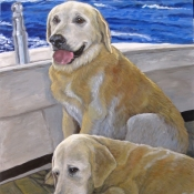 Bailey and Rocky, custom pet portraits of two yellow labs by Hope Lane