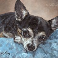 Completed Painting of Pepe, the Chihuahua