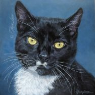 Finished Portrait of Kitty