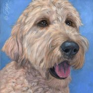 Completed Painting of a Golden Doodle