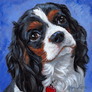 8 x 8<br /> Pet Portrait