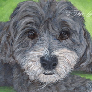 12 x 16 Pet Portrait