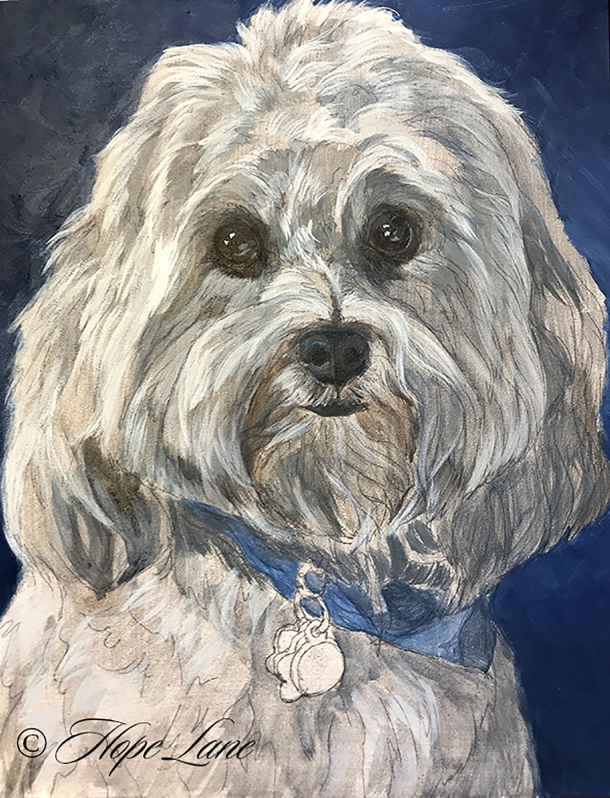 Midway Through A Havanese Painting