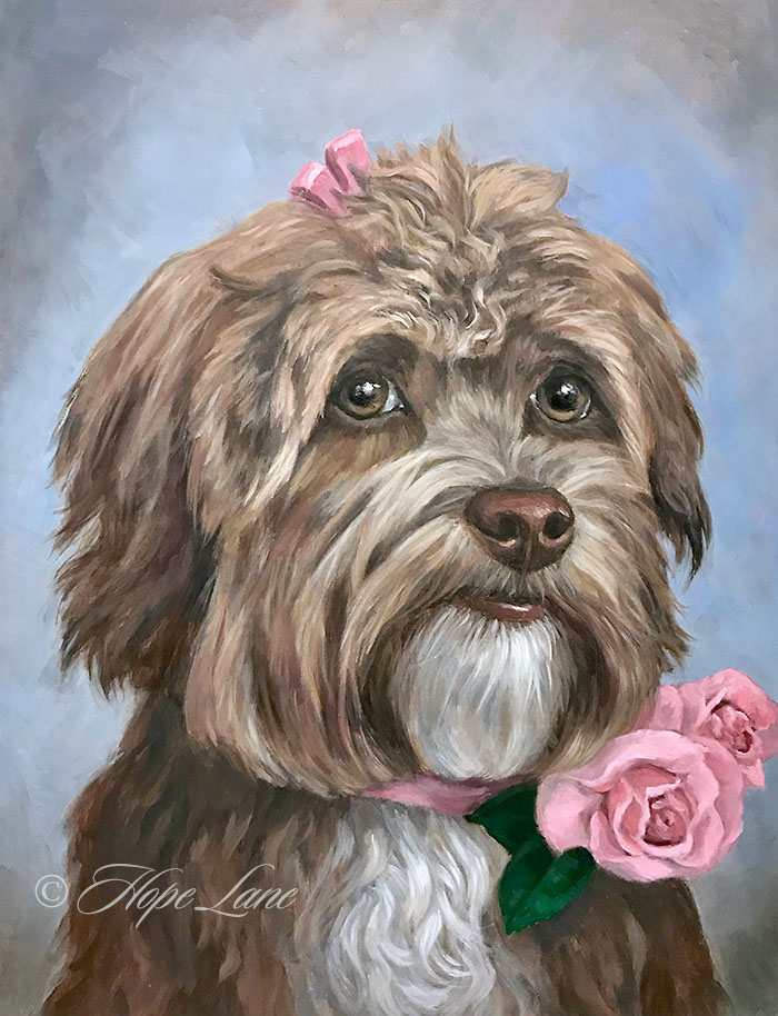 Completed Painting of A Havanese