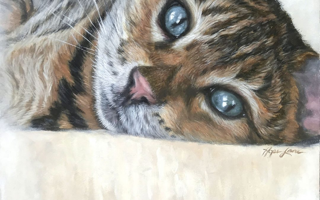Finished Painting of a Cat Named Buck