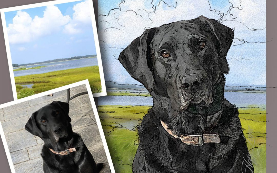 Sketch for a Painting of a Black Lab